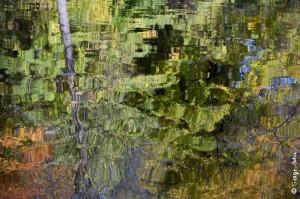 SergeAubin.ca-atelier automne-1307